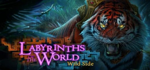 Hidden Objects - Labyrinths of World: Wild Side