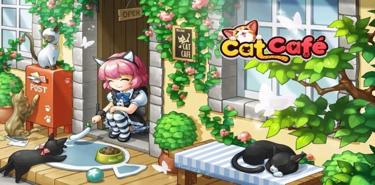 Cat Cafe: My cat's story