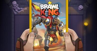 Brawl King - Roguelike Hack'n'Slash (Early Access)